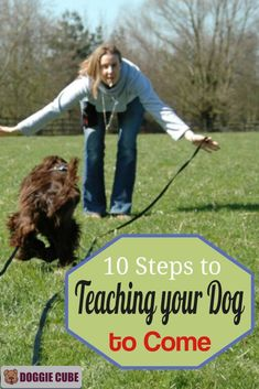 Does your dog come when called? Want to know how to teach the come command for dogs? Here are 10 tips to teaching your dog to come when called.