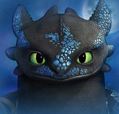 Toothless:)