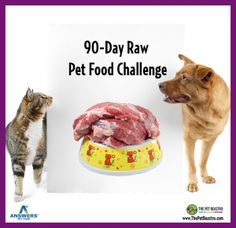90 Day Raw Challenge hosted by Answers Pet Food and The Pet Beastro