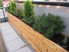 Long wood planter boxes. 6 of them