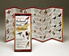 Backyard Birds Of The Southeast ~ Folding Guide (By Sibley)