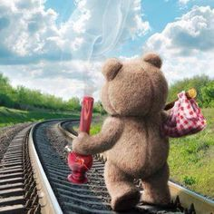 Got my weed and some clean undies,,lol Ted Bear, Weed Humor, Puff And Pass, Smoking Weed, Running Away, Adult Humor, Bongs, Trippy, Haha