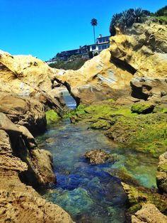 The kids love to go swimming in the laguna beach tide pools located at woods cove beah in laguna. When the tide goes back, it is the perfect time to swim