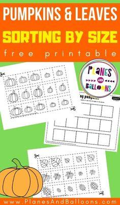 Sorting worksheets for preschool and kindergarten for fall - sorting pumpkins from big to small. #prek #preschool #kindergarten #planesandballoons
