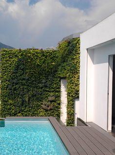 Green terrace - www.sundaritalia.com