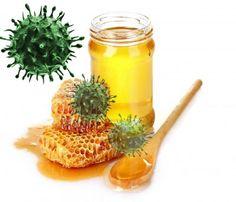 Honey Found To Have Potent Anti-Influenza Activity
