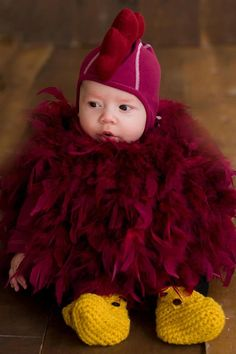 How adorable is this? Cocky Halloween costume for kids uploaded to University of South Carolina's Facebook page by Heather Nolan. #gamecocks
