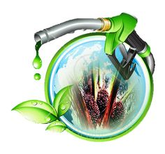 http://www.cannabistherapysolutions.com/cannabis-can-used-fuel-fill-marijuana/  cannabis fuel is a real possibility
