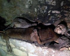Morti nostrani…(sarebbe bello riuscire a filmare qualcosa alle catacombe di palermo)