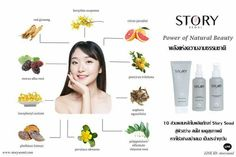 Key Ingredients in Story Seoul Skincare. The Power of Natural Beauty.