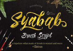 Best Free Script Fonts for Logo Design & Logotypes (20 Fonts) - 18