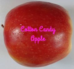 I just listed Cotton Candy Apple Scented Wax Tarts  on The CraftStar @TheCraftStar #uniquegifts