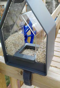 EMSA Futtersilo VogelhausLandhaus im Test - Sush-Testet Terrarium, Aquarium, Home Decor, Birds, Farmhouse, Lawn And Garden, Terrariums, Goldfish Bowl, Decoration Home