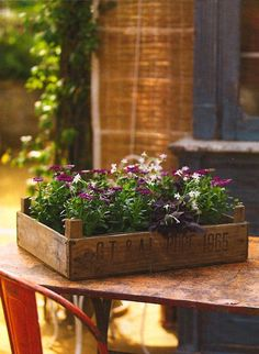 white and purple flowers in an old wooden crate