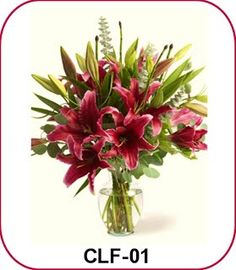 Lily - Casablanca - Florist Jakarta - Online Flower Shop :: Hotline 021-60503980, 021-94229037, Pin BB: 320F2810
