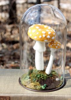 Felted mushrooms under a bell glass
