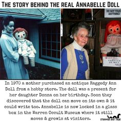 Annabelle, the real haunted Doll 👻 ! Omg I love the paranormal. Scary Horror Stories, Short Creepy Stories, Spooky Stories, Ghost Stories, Real Horror, Wow Facts, Wtf Fun Facts, Funny Facts, Creepy Facts