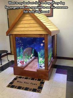 Fish tank/dog house.. legit