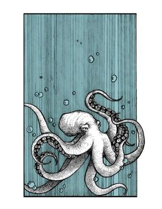 Drawings Octopus x - This is a digital reproduction of an original pen and ink drawing. Approximately x printed on crisp 80 lb cardstock. All prints are packaged in a vinyl sheath with a thick piece of matboard for protection. Art Inspo, Kunst Inspo, Art And Illustration, Illustrations, Octopus Illustration, Octopus Art, Octopus Drawing, Octopus Sketch, Octopus Painting