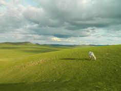 Partir voyager seul en #Mongolie: témoignage d'Eliott  #voyage #Asie