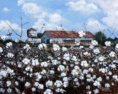 White Harvest by Cynara Shelton. Landscape PrintsLandscape ArtLandscape  PaintingsFarm ... 0063e4c75
