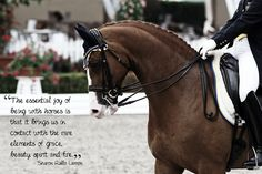 Dressage - its about connecting to something deeper, instinctual and natural.