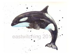 nautical animals KILLER WHALE print Sealife by eastwitching, $23.17