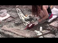 ▶ Digging Dinos at Doelling's Bowl - YouTube
