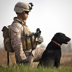 """Don't Abandon Our Dogs of War  Military dogs shouldn't be considered mere """"equipment"""" to be left behind.  By Jonah Goldberg"""