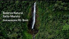 water falls 120mt - Salto do Morato, pr