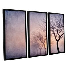 ArtWall 'Cora Niele's Early Morning' 3-piece Floater Framed Set
