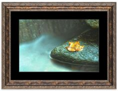 """11"""" x 14"""" Traditional Photography Prints / Wall Décor Nature Photograph: Misty Leaf, Waterfall with Yellow Leaf and Moss. View all of the stunning Nature Photos by Landscape and Nature Photographer Melissa Fague at:  https://www.etsy.com/shop/PIPAFineart Limited edition fine art nature photography prints and canvas wraps are also available in a variety of sizes."""
