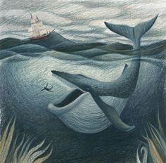 Children's Illustrations - Jesse Hodgson Illustration