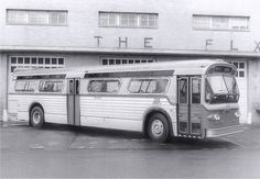 GREEN BUS LINES  FLEX  BUS