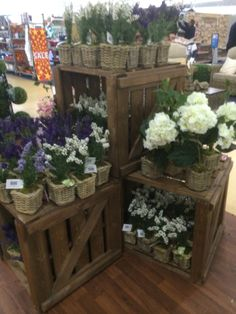 Dobbies - Garden Centre - Homewares - Lifestyle - Living - Garden - Home - Outdoor - Landscape - Visual Merchandising - Customer Journey - Clear Retail - www.clearretailgroup.eu