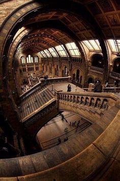 National History Museum, London, England