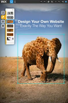 Don't settle for another boring website. Wix.com gives you 1,000's of beautiful web templates to choose from - edit & publish within minutes! No coding or design experience necessary, Start now - it's easy and FREE.