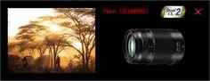 LUMIX G X VARIO 35-100mm |交換レンズ|デジタルカメラ(交換レンズ)|Panasonic
