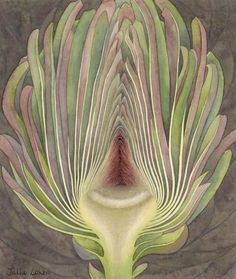 Artichoke section Julia Loken is an English botanical artist. Inspiration for her work comes from the garden surrounding her home in the village of Eynsham, west of the city of Oxford. Botanical Illustration, Botanical Prints, Illustration Art, Botanical Drawings, Motif Floral, Art Graphique, Patterns In Nature, Natural Forms, Food Art