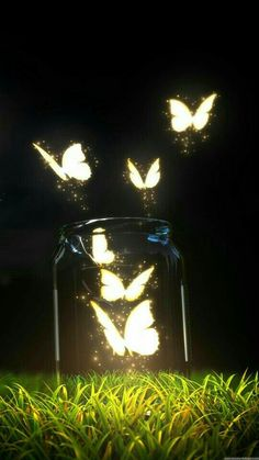 Character Inspiration, lighted glowing lightening butterflies flying out of jar, Fantasy Butterfly Jar Android Wallpaper Butterfly Wallpaper, Galaxy Wallpaper, Nature Wallpaper, Wallpaper Backgrounds, Wallpaper Samsung, Iphone Wallpaper Lights, Trendy Wallpaper, Lock Screen Backgrounds, Lock Screen Wallpaper Iphone