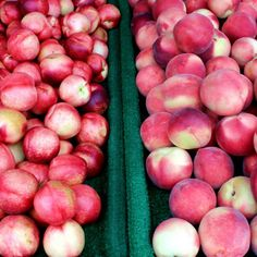 What is your favorite thing to do with peaches or nectarines? #UncontainedLife #FarmToTable #FarmersMarket #LocalBusiness #LocalFood #EatLocal http://ift.tt/11JoMcs
