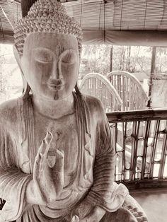 #walkinfloatout #yogaretreats #wellbbeingretreats #bestinBali #maskingforafriend #CovidClean #SafeStayPromise  #covidescape #retreatleader #baligasm#mindfulness#selfdevelopment#mentalhealthmatters #floatingleaf #strongerTogether #TripAdvisorHallOfFame #selfimprovement #islandofthegods #baliindonesia #explorebali #bestofbali Bali Retreat, Yoga Retreat, Air Yoga, Best Of Bali, Bali Resort, Bali Holidays, Bali Travel, Trip Advisor, Buddha