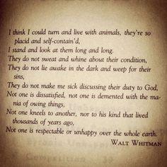 Walt Whitman Poems - Bing Images