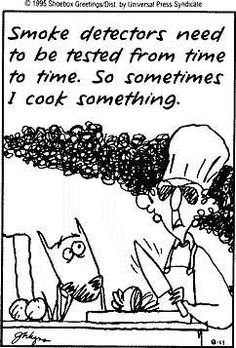 Smoke detectors need to be tested from time to time.  So, sometimes I cook something. ~ Maxine
