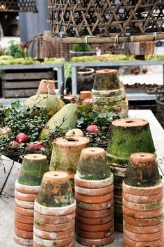aged terracotta pots covered with moss.<3