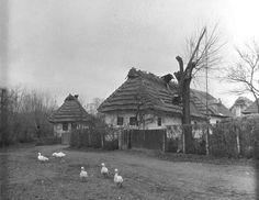 #DlhéKlčovo #Zemplín #Slovensko #Словакия #Slovakia Eastern Europe, Old Photos, Nostalgia, House Styles, City, Castles, Folk, Painting, Traditional