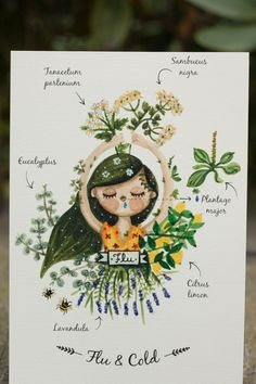 Try this recipe and almost instantly alleviate your cold and flue symptoms! Herbs are a great and tasty way to cure yourself! Watercolor Portraits, Watercolor Paintings, Herbs Illustration, Flu, Herbalism, The Cure, Tasty, Treats, Recipes
