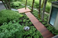The combination of contemporary, Asian and Pacific Northwest influences makes this entry garden feel at once serene and confident. See more photos of this garden at our website, mosaic-gardens.com.