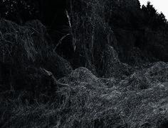 熊谷正の『美・日本写真』(2015/04/21更新)写真/小林紀晴 〜『Gelatin Silver Session 2015』より「見知らぬ故郷」〜