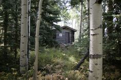 Cabin in the San Juan Mountains of Colorado.  Submitted and photographed by Gabriel Lifton-Zoline